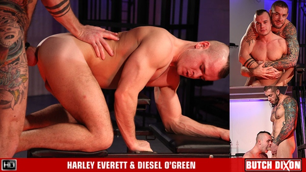 Macho hung Harley Everett fucks teddy bear Diesel O'Green at Butchdixon