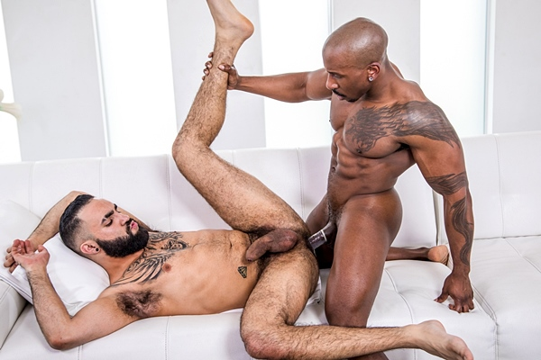 Ripped black muscle top Max Konnor fucks the cum out of bearded macho stud Zaddy in an interracial scene at Noirmale