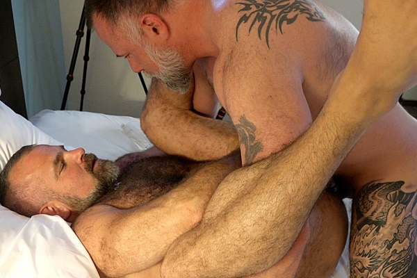 Hairy bear daddy Thor Buckner barebacks and creampies inked muscle bear Liam Angell before Liam creampies Tigerpouncer in Husband Swap Part 2 at Musclebearporn