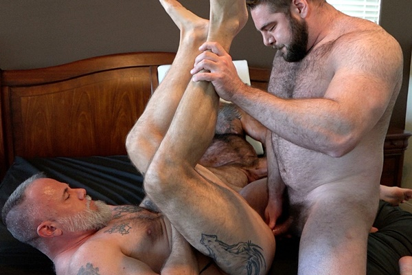 Hot hairy muscle bear Teddy Hunter and Will Angell bareback inked daddy Liam Angell before they creampie and fuck the cum out of Liam in Roid Load at Musclebearporn