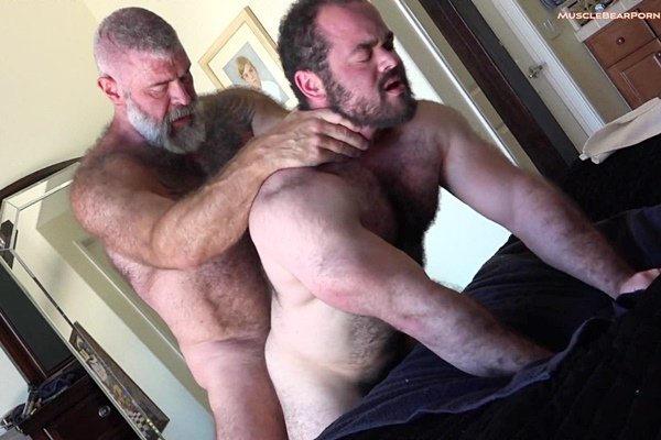 Hairy bear daddy Will Angell barebacks bear cub Steve Strongarm before he creampies Steve in an older younger scene in Breeding Livestock at Musclebearporn