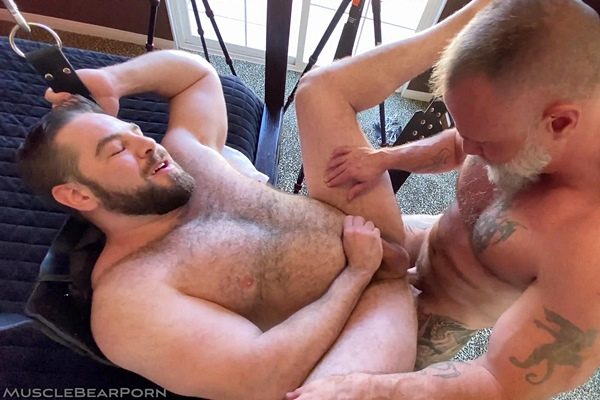 Liam Angell and Will Angell bareback fuzzy muscle bear Teddy Hunter before Will fucks the cum out of Teddy and creampies him in Gettin' Big and Takin' Dick at Musclebearporn
